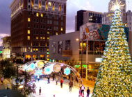 Light Up the Holidays: Best Lights of Phoenix